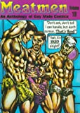 Meatmen: An Anthology of Gay Male Comics, Volume 19