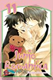 Junjo Romantica, Band 11